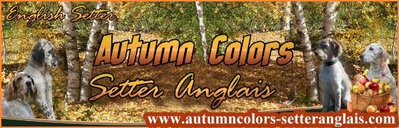 www.autumncolors-setteranglais.com